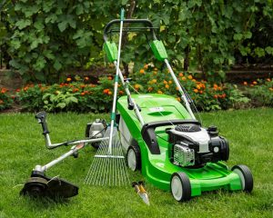 lawn care basic tools for new homeowner