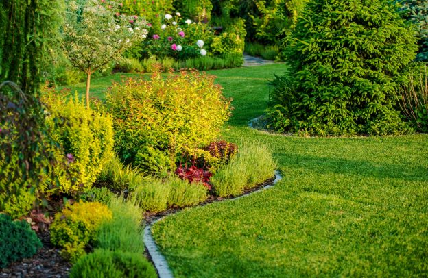 garden maintenance landscaping